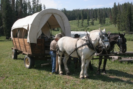Family wagon train adventures