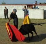 bullfight school