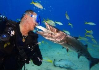 World's best dive trips