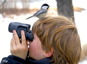 birdwatching tour birding life list